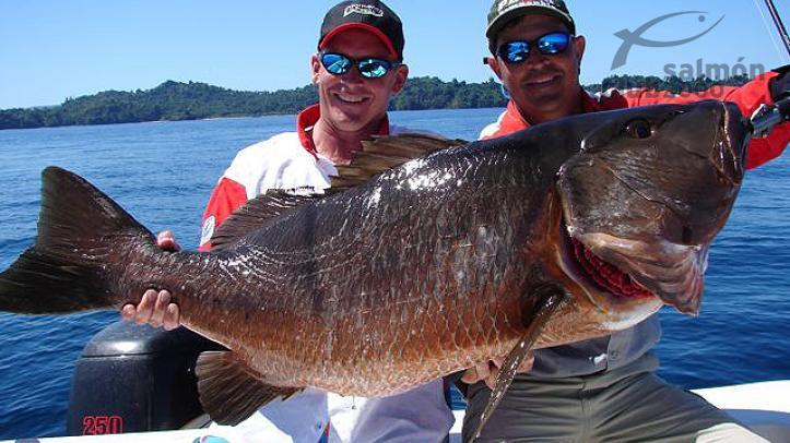 Pesca en el Golfo de Chiriquí, Oceáno Pacífico, Panamá.
