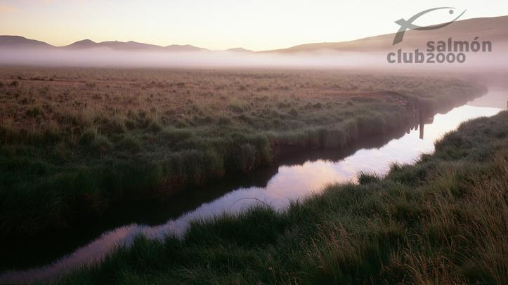 Pesca en arroyos silvestres en Hacienda del Zorro