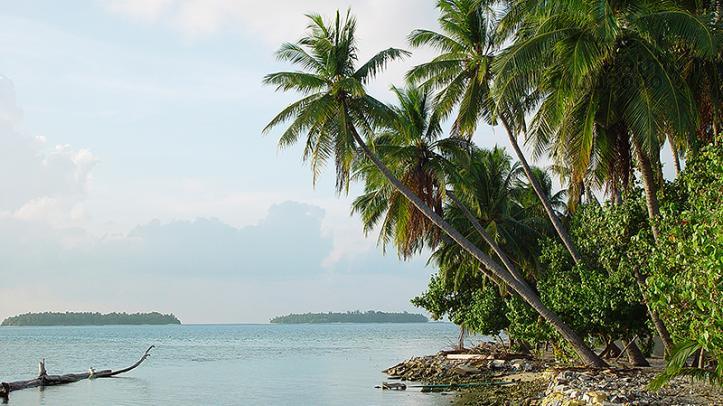 Playa del Archipiélago de Maldivas