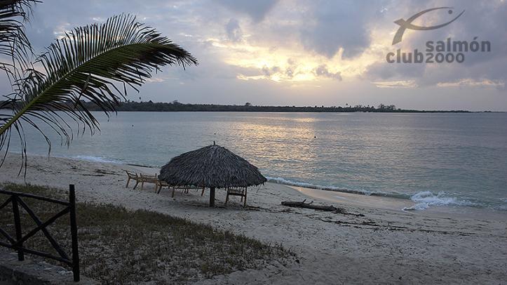 Playa de la Costa Sur de Tanzania
