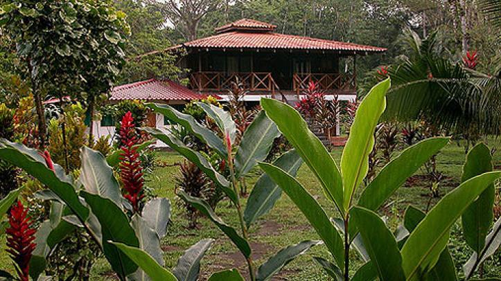 Jungle Tarpon Lodge