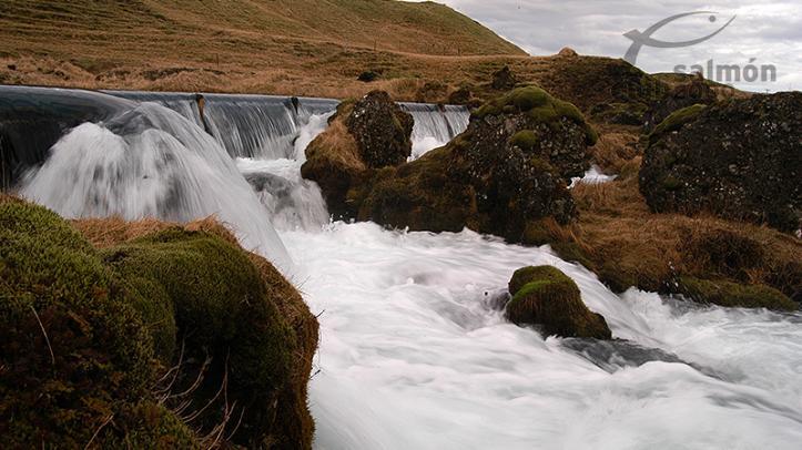 Río Tungulaekur