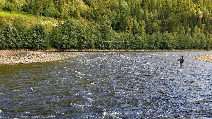 Pescador en tramo Boren Söndere. NFC Tramo BS
