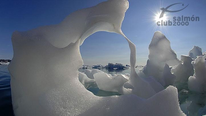 Iceberg del sur de Groenlandia, escenario de la caza del Buey Almizclero