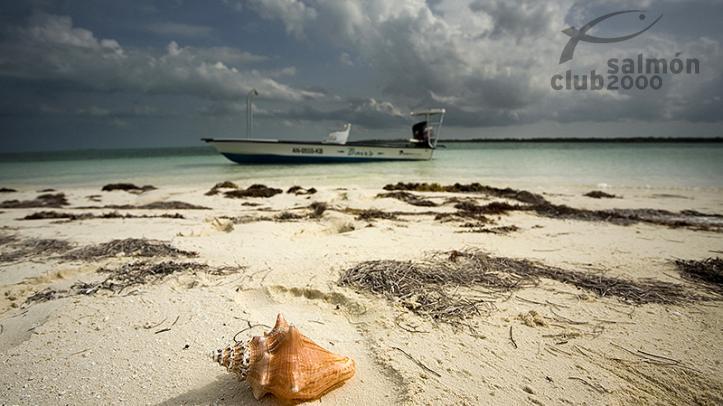 Playa de la isla South Andros, Bair´s Lodge, Bahamas