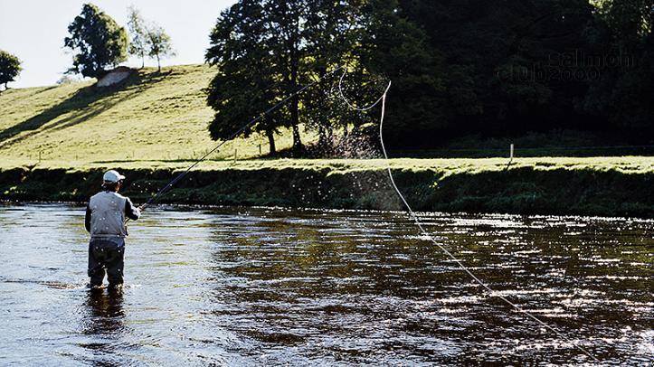 Pesca en el río Blackwater con Ballyvolane House