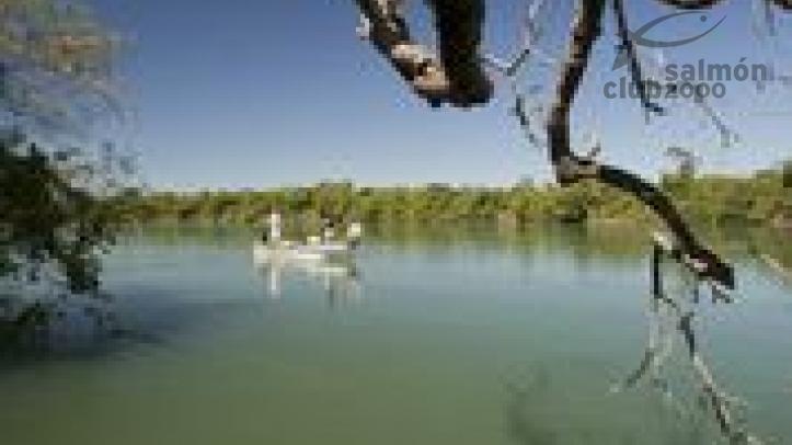Pesca en Río Paraná - Dorado