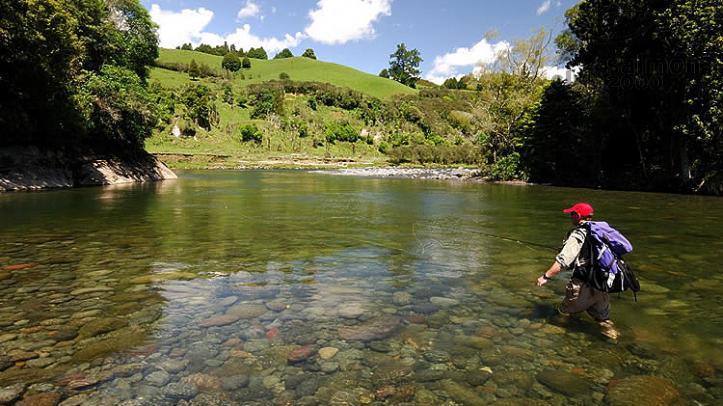 Pesca de truchas en río Tongariro. Tongariro Lodge