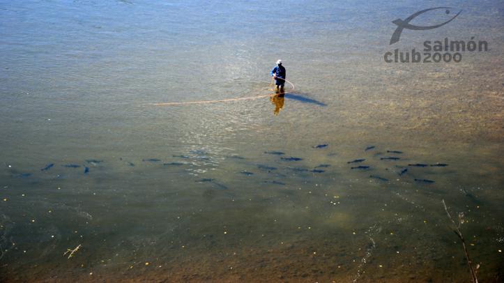 Pesca en tramo exclusivo de Ekaterina Lodge
