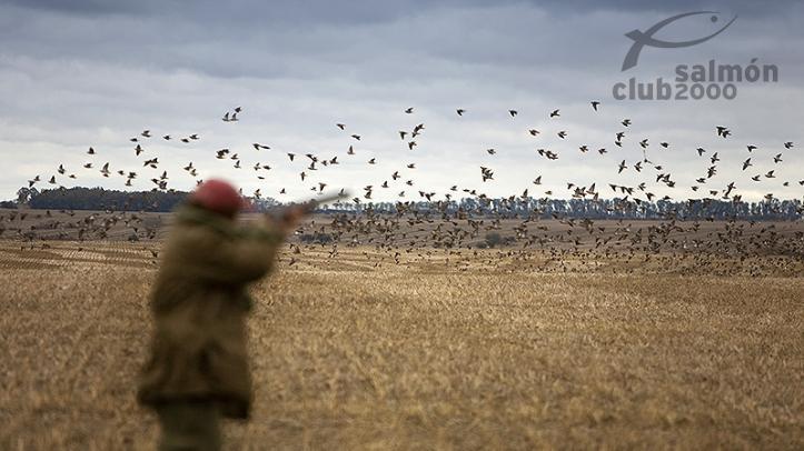 Caza de perdices, palomas y patos en Estancia San Juan, Provincia de Paysandú, Uruguay.