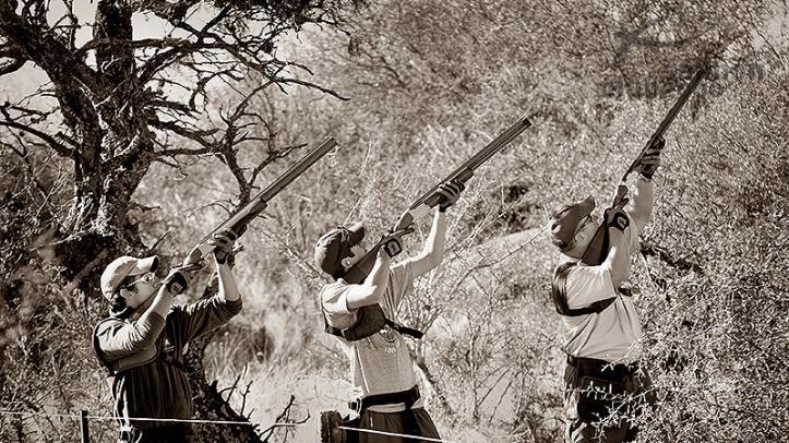 Caza de palomas blancas ó Dove en La Dormida Lodge, Provincia de Córdoba, Argentina.