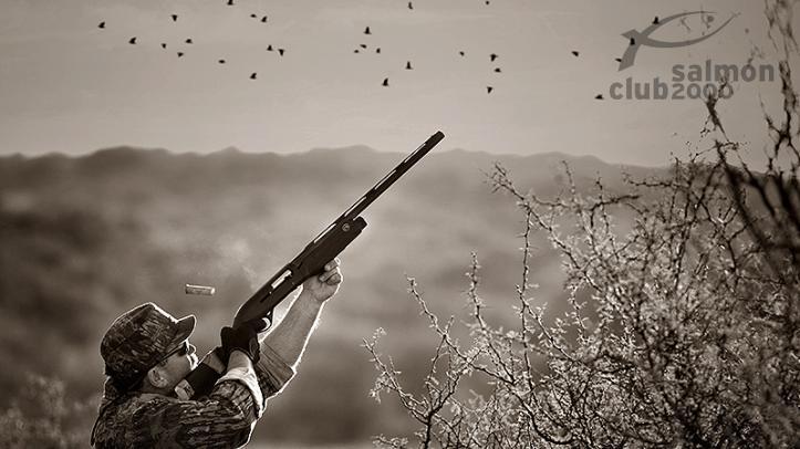 Caza de palomas blncas ó Dove en Pica Zuro Lodge, Provincia de Córdoba, Argentina.