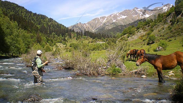 Río de alta montaña