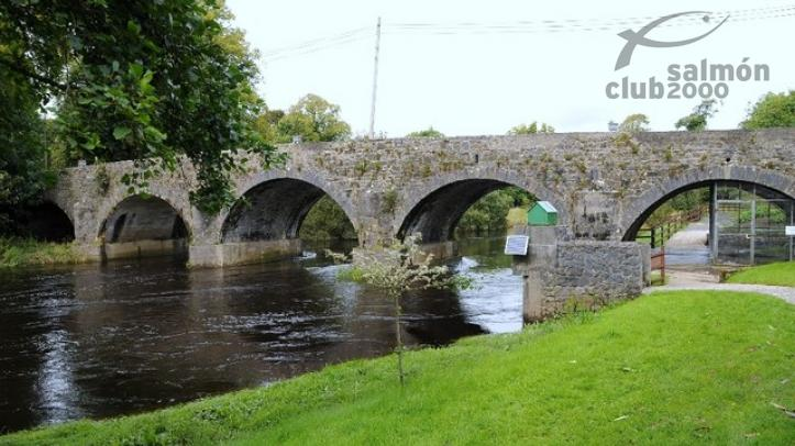 Pesca en Irlanda