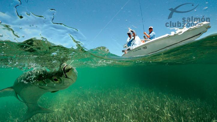 Pesca desde la barca
