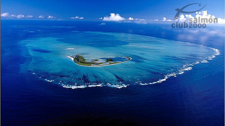 Vista aérea sobre el atolón Alphonse