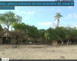 """Portada del vídeo """"Tanzania, pesca extrema en los arrecifes de coral"""""""